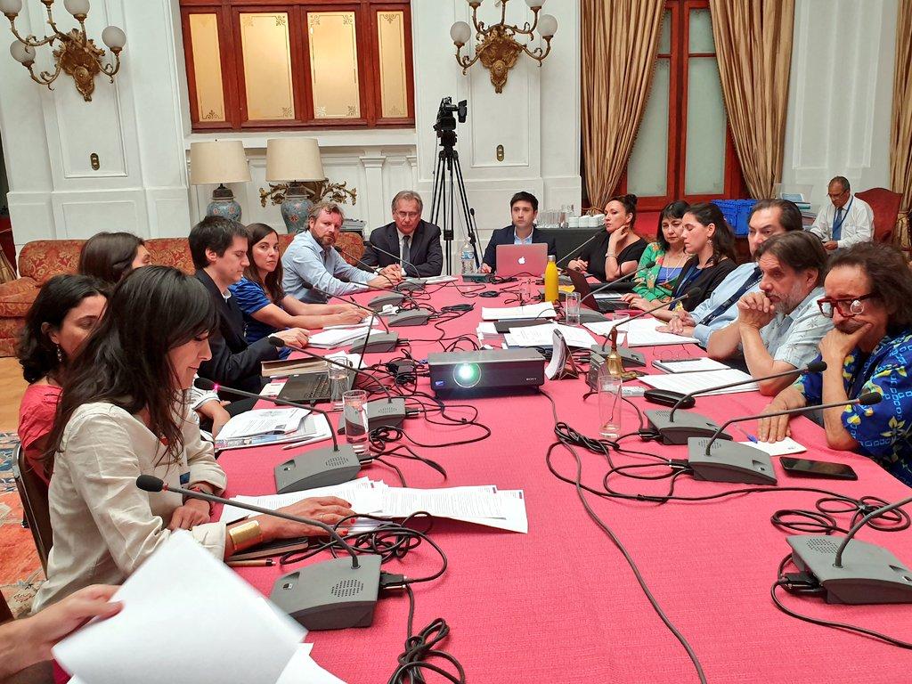 6.01.2020 — Directora del Museo Histórico Nacional Macarena Ponce de León