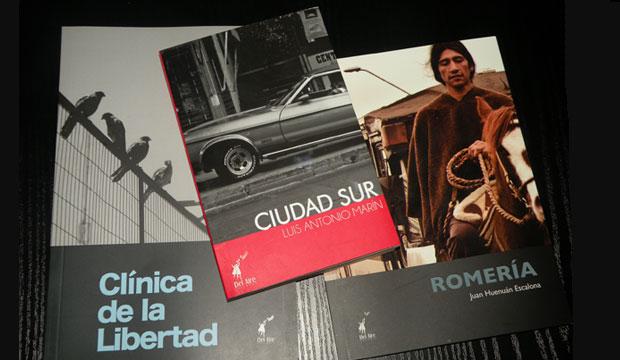 Consejo de la Cultura de La Araucanía recibió donación de libros