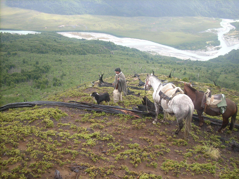 Gaucho de mi Patagonia