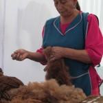 VI Encuentro Zonal de Cultores Indígenas