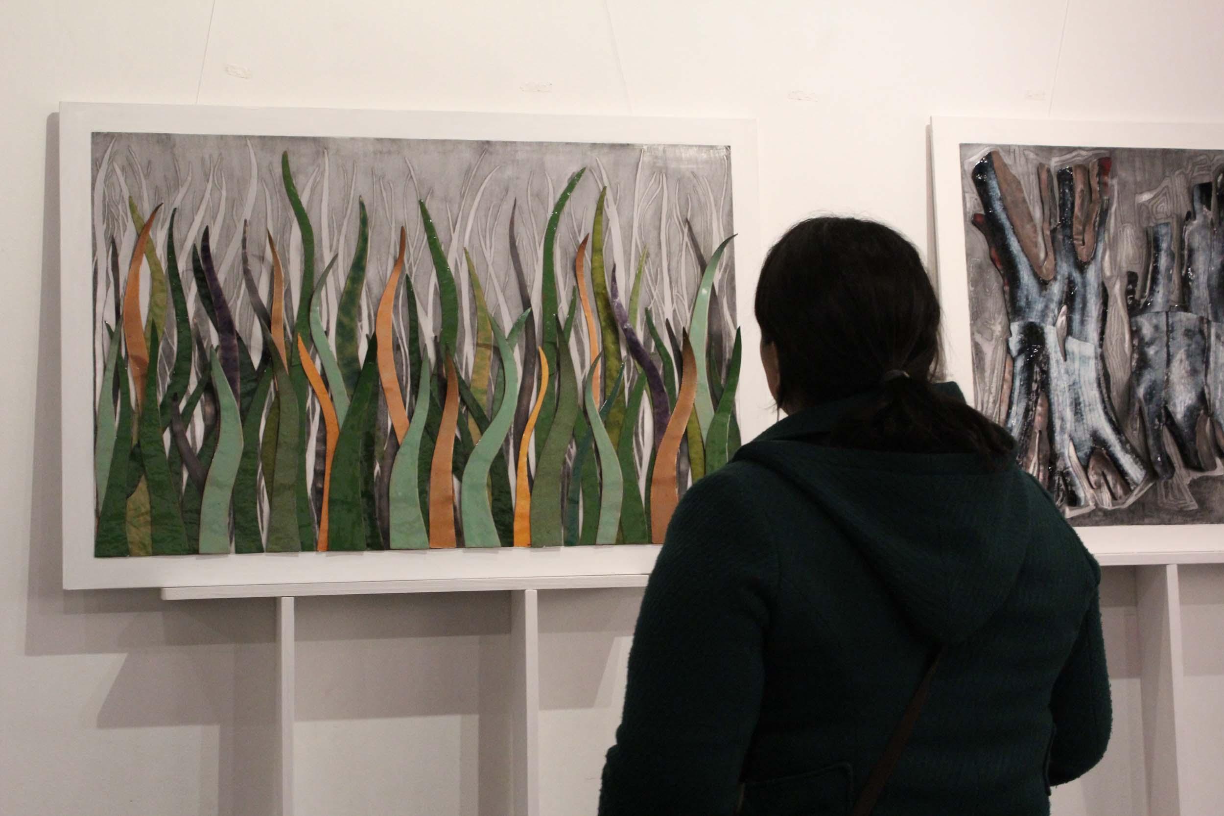 """La """"Exposición texturas y matices de Aysén"""" estará abierta hasta el 20 de enero de 2013 en la Biblioteca Regional de Coyhaique."""