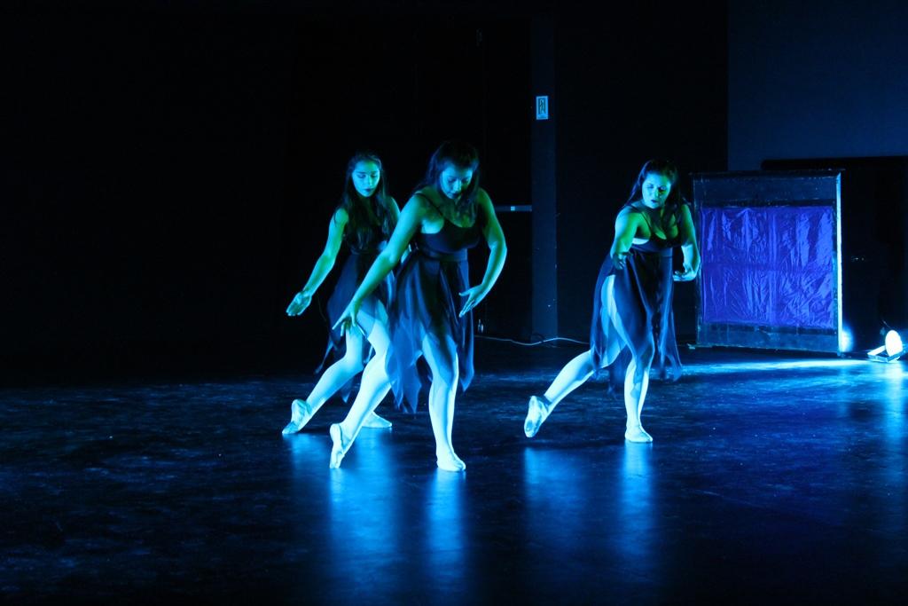 Ocho elencos de danza se presentaron en la Gala del Día de la Danza