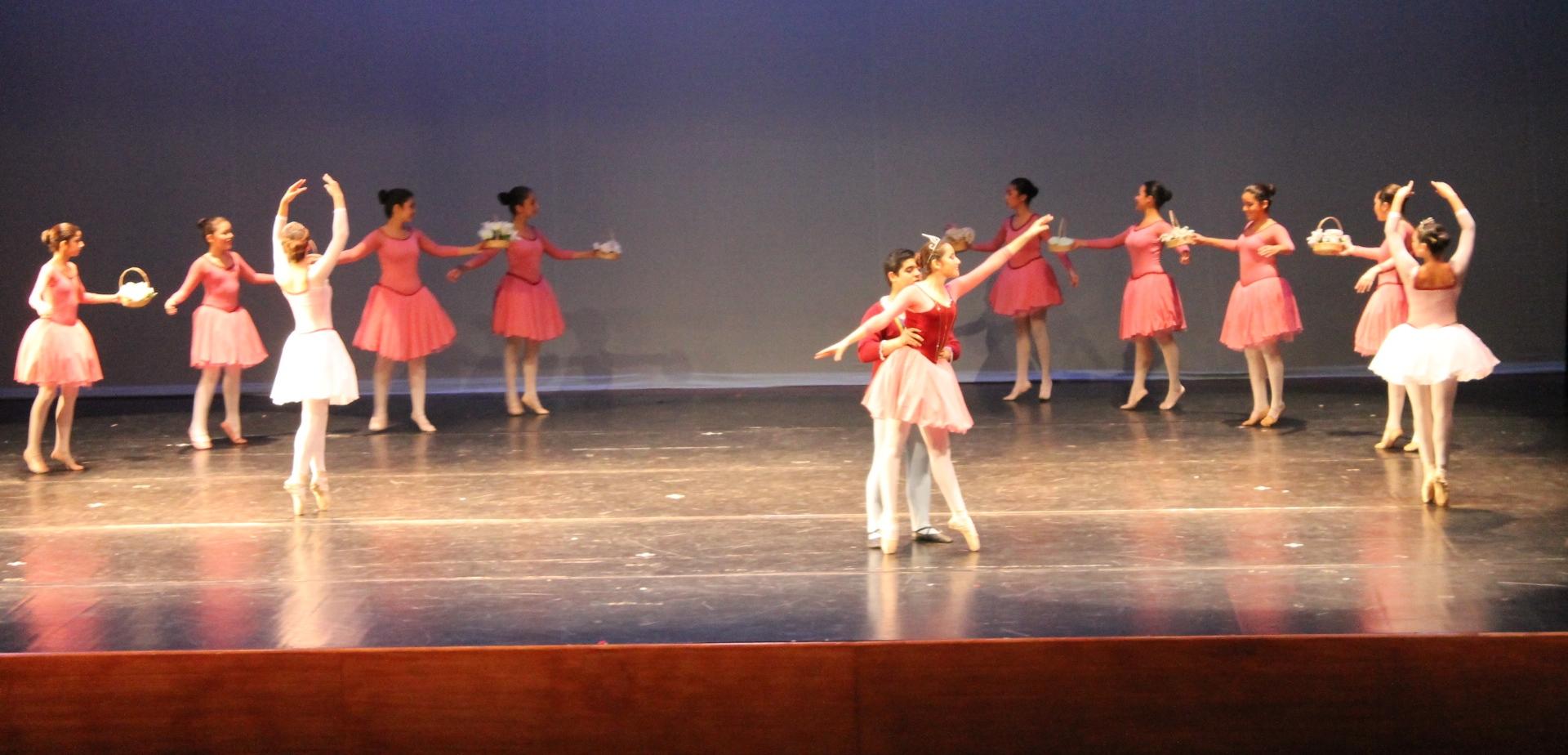 Gala de Danza 2013
