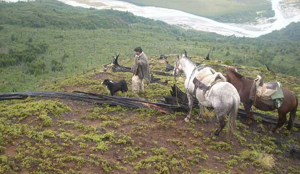 Gaucho de mi Patagonia - abi - Escuela José Miuel Carrera, Aysén