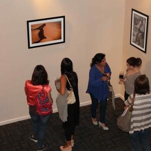 Exposición Dreams Freddy Bugueño