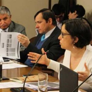 Ministra Barattini expone metodología de la Consulta Previa a los Pueblos Indígenas en la Comisión de Cultura de la Cámara de Diputados