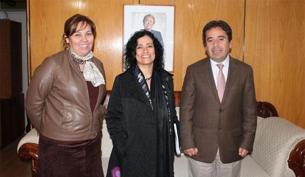 Autoridades regionales de Atacama comprometen su apoyo para la implementación de programas de cultura en la zona