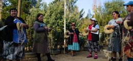 thv-2015-colchanderos-colch