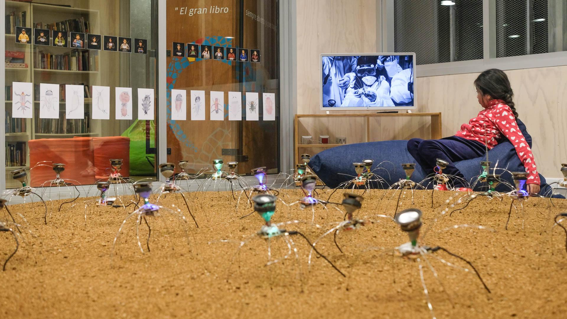 Niños y niñas de La Ligua toman conciencia sobre el cambio climático con proyecto multisensorial de insectos sonoros