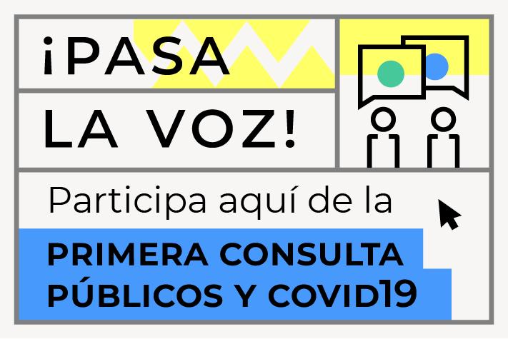 CONSULTA EN LÍNEA: PÚBLICOS Y COVID-19