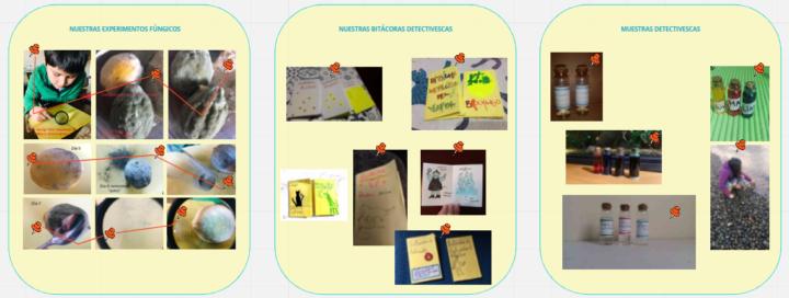 Recorte del panel Miró elaborado con fotografías y videos de los experimentos desarrollados por niños/as participantes