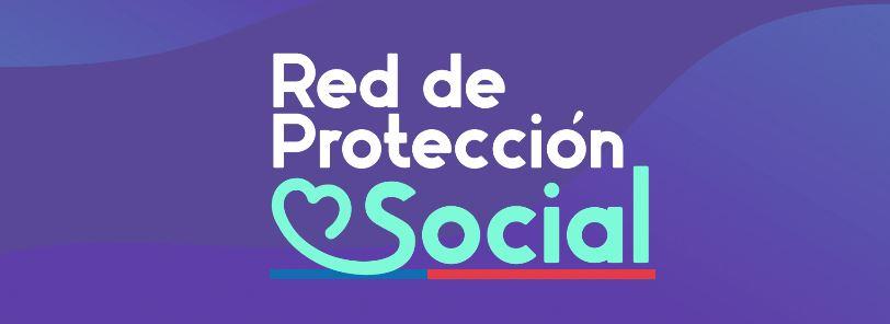red de protección social del estado