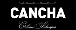 banner-cancha