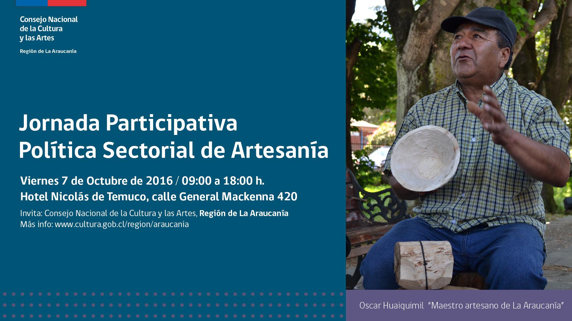 viral-politica-artesania-araucania-3